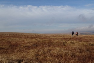 An expanse of moor ahead of us.